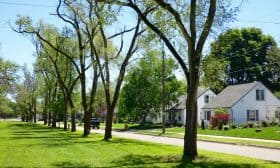 Veterans Green is a linear tree-lined park and the largest of the neighbourhood's public open space